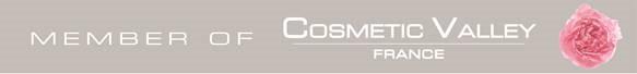 Logo Cosmetic Valley client de l'EA d'Orléans